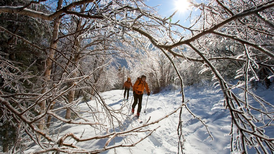 Tuckerman's Ravine Trail and the Shelburn Trail with backcountry skis.