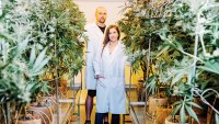 Green Dot Labs Is Targeting the Luxe Weed Market With Clean, Flavorful Extracts