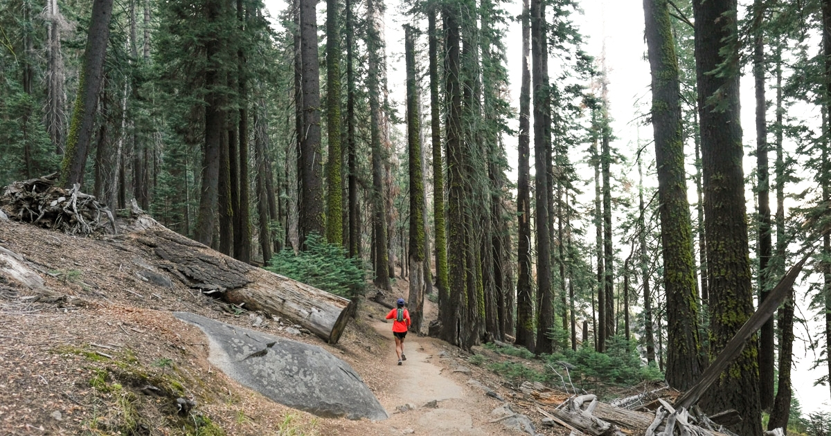 5 of the Most Scenic Trail Runs in Yosemite National Park