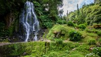 Caldera Hikes, Tea Plantations, and Geyser Stew: The 4-day Weekend on São Miguel, the Azores