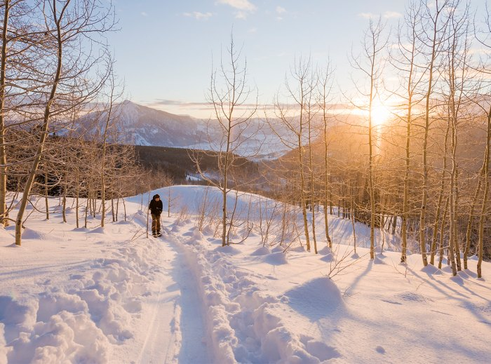 Backcountry snowboarder standing in winter scenery, Crested Butte, Colorado, USA