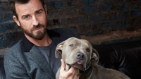 justin theroux dog