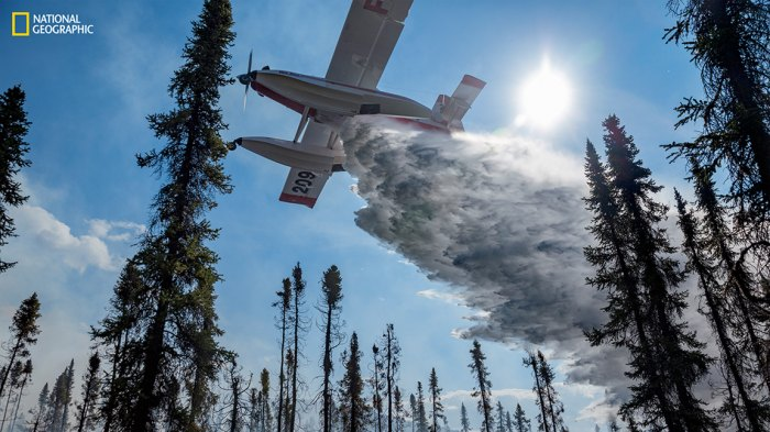 A Fire Boss plane dumps water to aid a ground crew fighting Fire 320 in the Brooks Range in June 2016. The single-engine plane is fitted with pontoons that can slurp up and disgorge 800 gallons every few minutes-here from nearby Iniakuk Lake. (Photograph by Mark Thiessen / National Geographic)