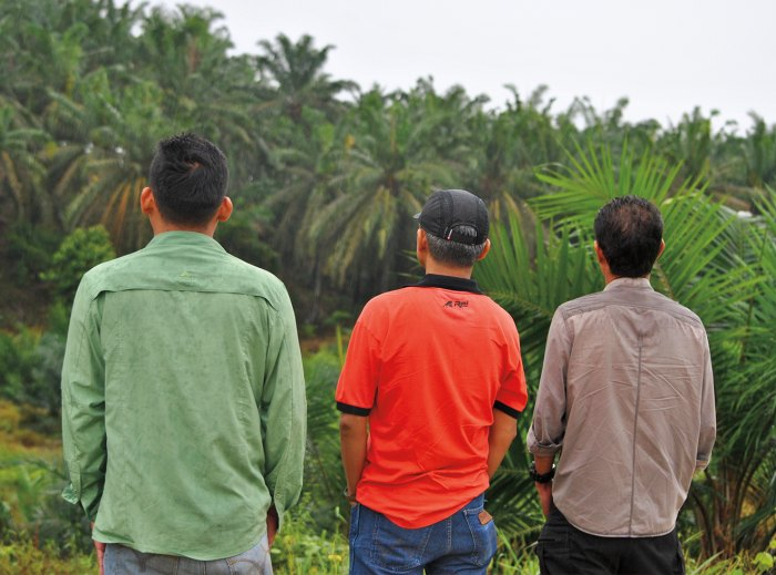 Three undercover investigators from Eyes on the Forest.