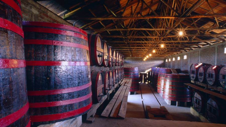 Winery in Santa Cruz, Chile