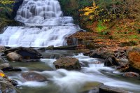 Finger Lakes National Forest,