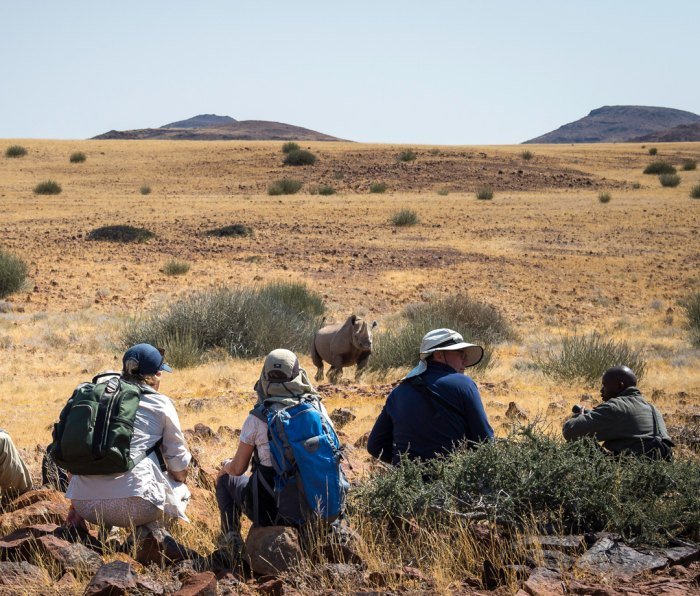 Tourists on walking rhino tour at Desert Rhino Camp in Damaraland, Namibia