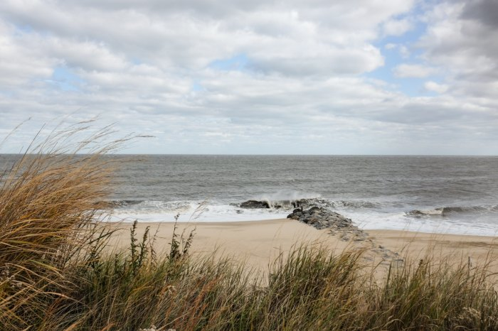 photo of the waves at Cape Henlopen State Park