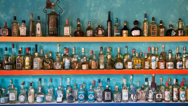 Wall of different tequila bottles at Mister Tequila tasting gallery