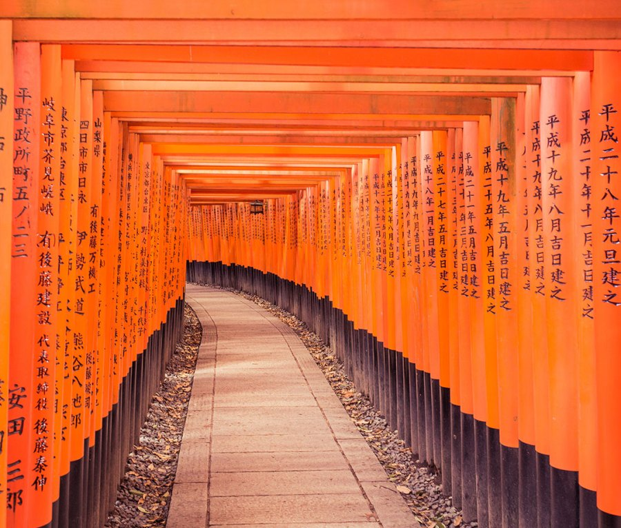 Footpath Amidst Orange Torii Gates With Chinese Script