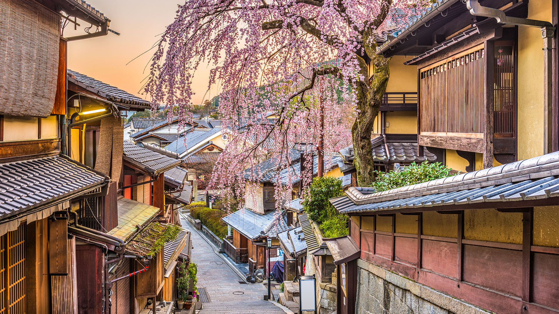 Temples, Geishas, and Bamboo Forests: The 4-Day Weekend in Kyoto