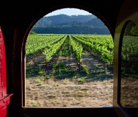 The Hop Train moves past vineyards in Napa, California