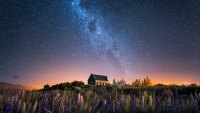 Church of The Good Shepherd and Milky Way with lupins blooming, Lake Tekapo, New Zealand