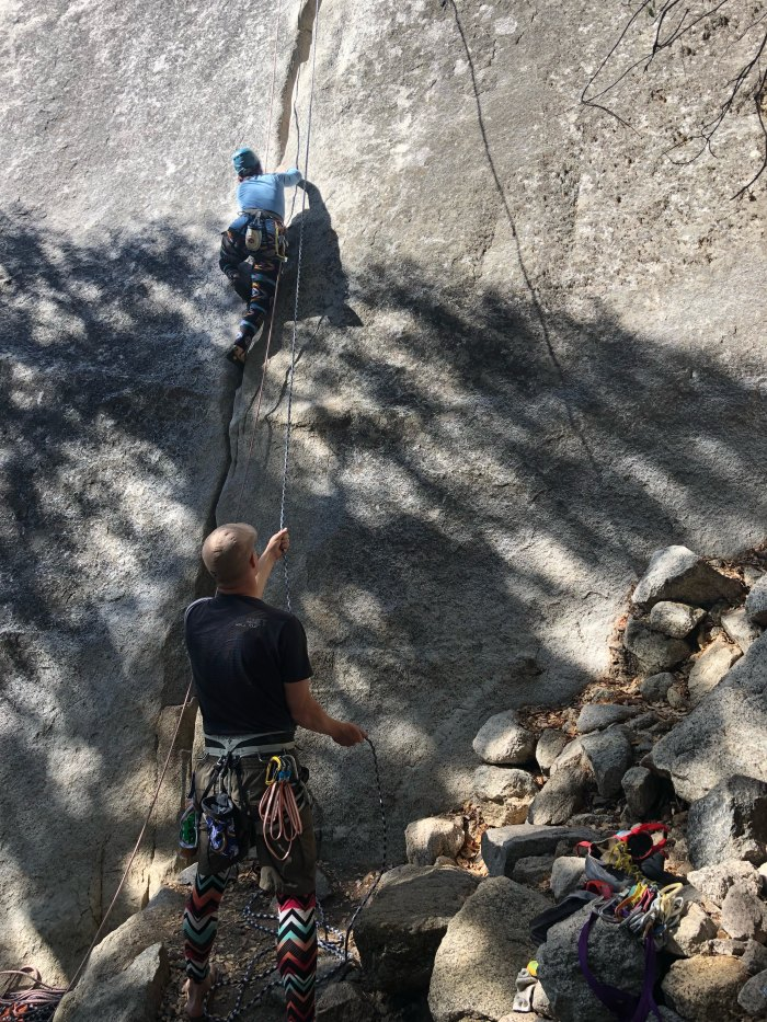 Forest climbing in Yosemite