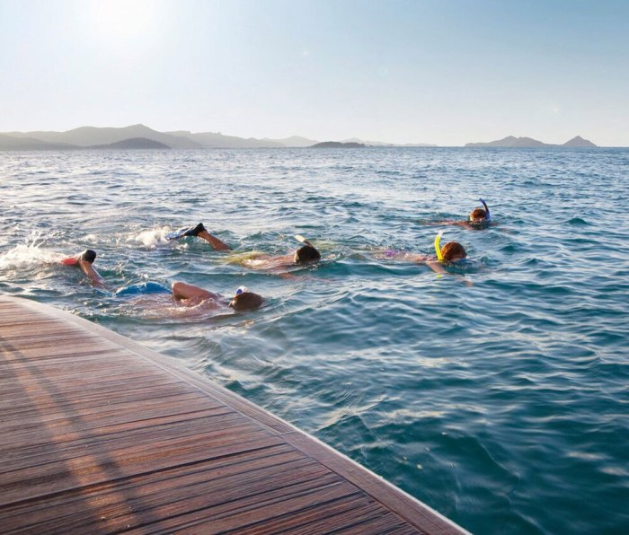 Snorkelling Tours with Ocean Dynamics