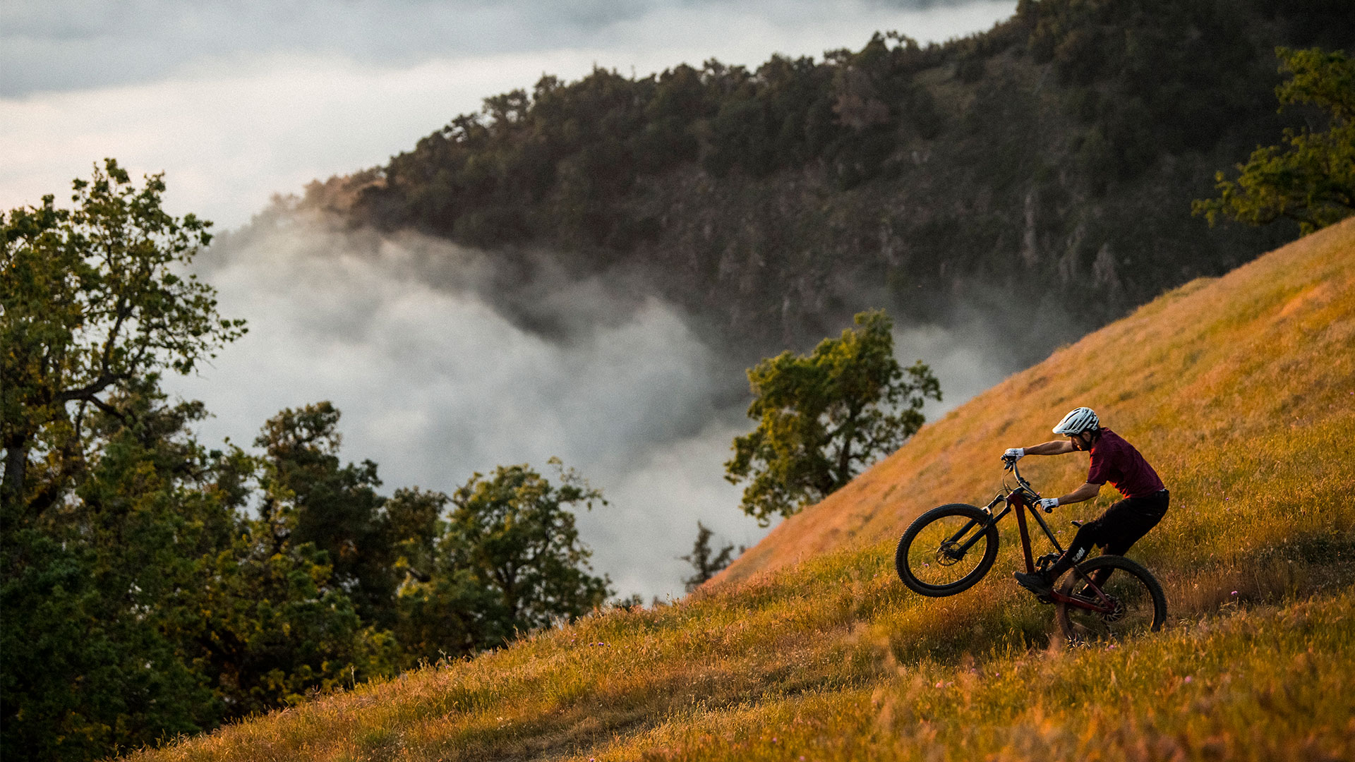 The Revamped Trek Fuel EX Mountain Bike Is Ready to Rock Any Trail