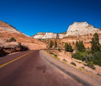 The road through Zion National Park, UT