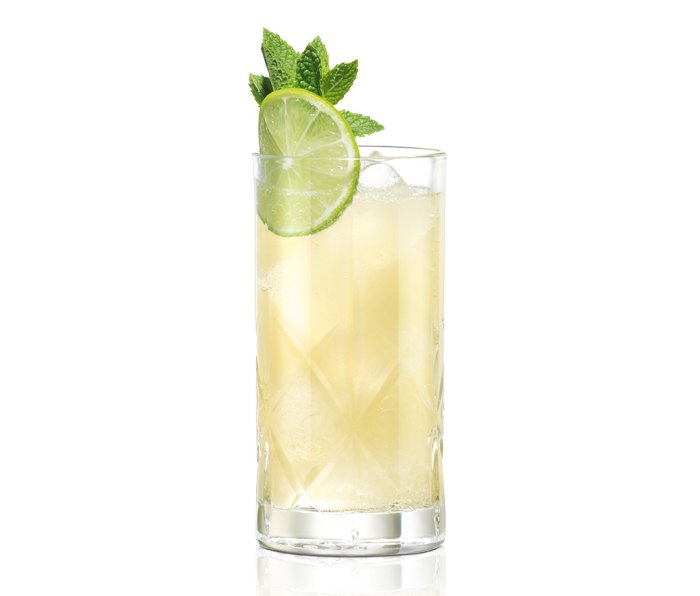 Caribbean Highball, made with the all-new Dewar's Caribbean Smooth