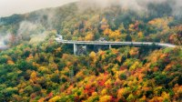 Autumn on the Blue Ridge Parkway at the Linn Cove Viaduct with Fog