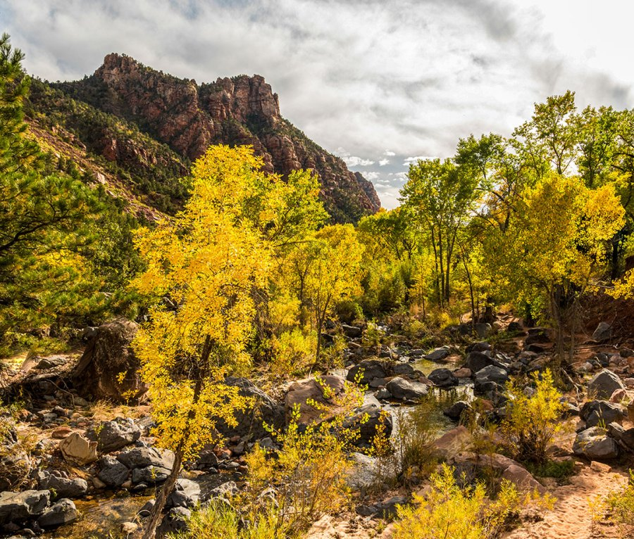 Autumn in the Valley of the Emerald Pools in Utah's Zion National Park