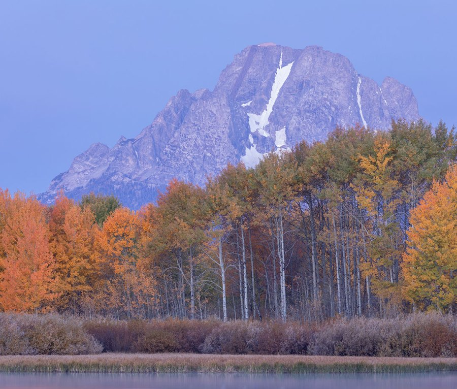 Fall foliage descends on Grand Teton National Park in Wyoming