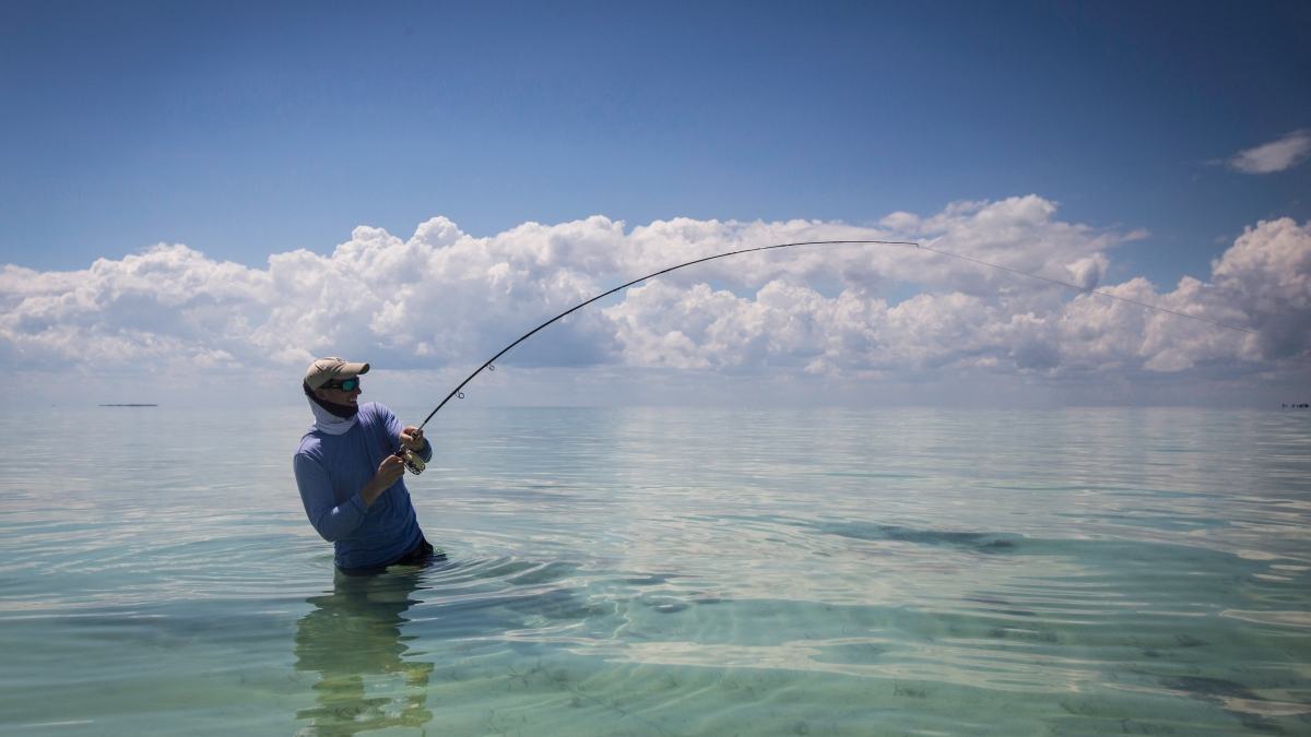 5 Essential Saltwater Fly-Fishing Tips, According to an Expert