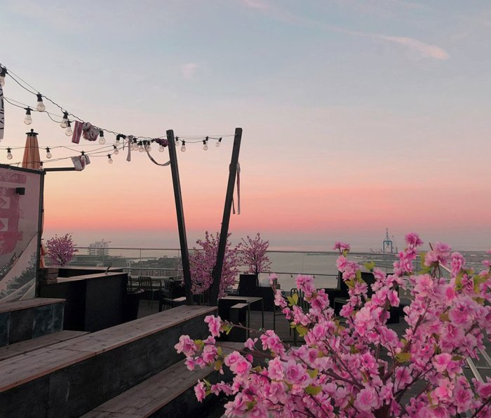 The roof top at sunset at the Story Hotel Studio Malmö