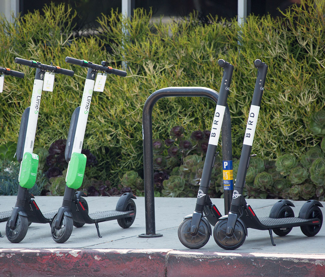 Lime and Bird electric scooters in Los Angeles, CA