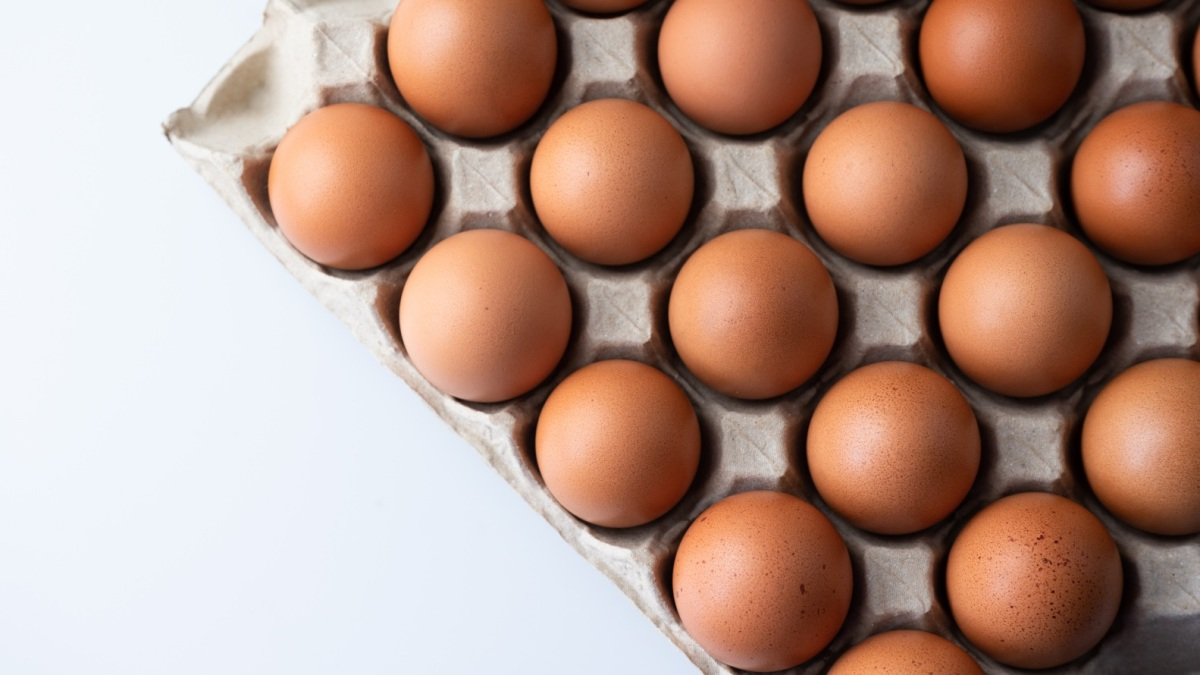 Why You Won't Benefit From Eating More Protein—Unless You're Losing Weight or Building Muscle