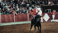 recortador; matador; bullfighter