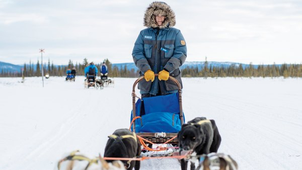 The Fjällräven Polar was inspired by the Iditarod but designed for ordinary people to experience; dogsledding; dogsled