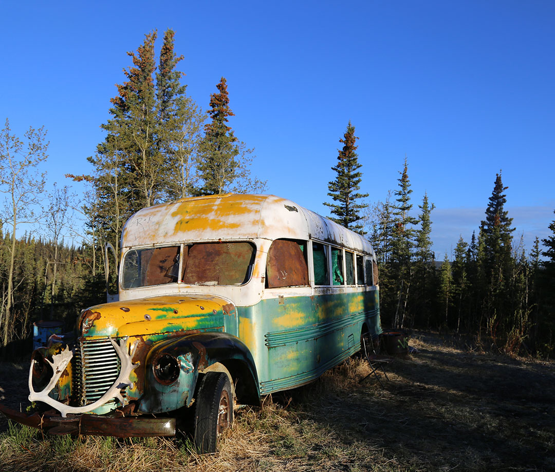 The Alaskan forest where Chris McCandless spent his last days in 1993
