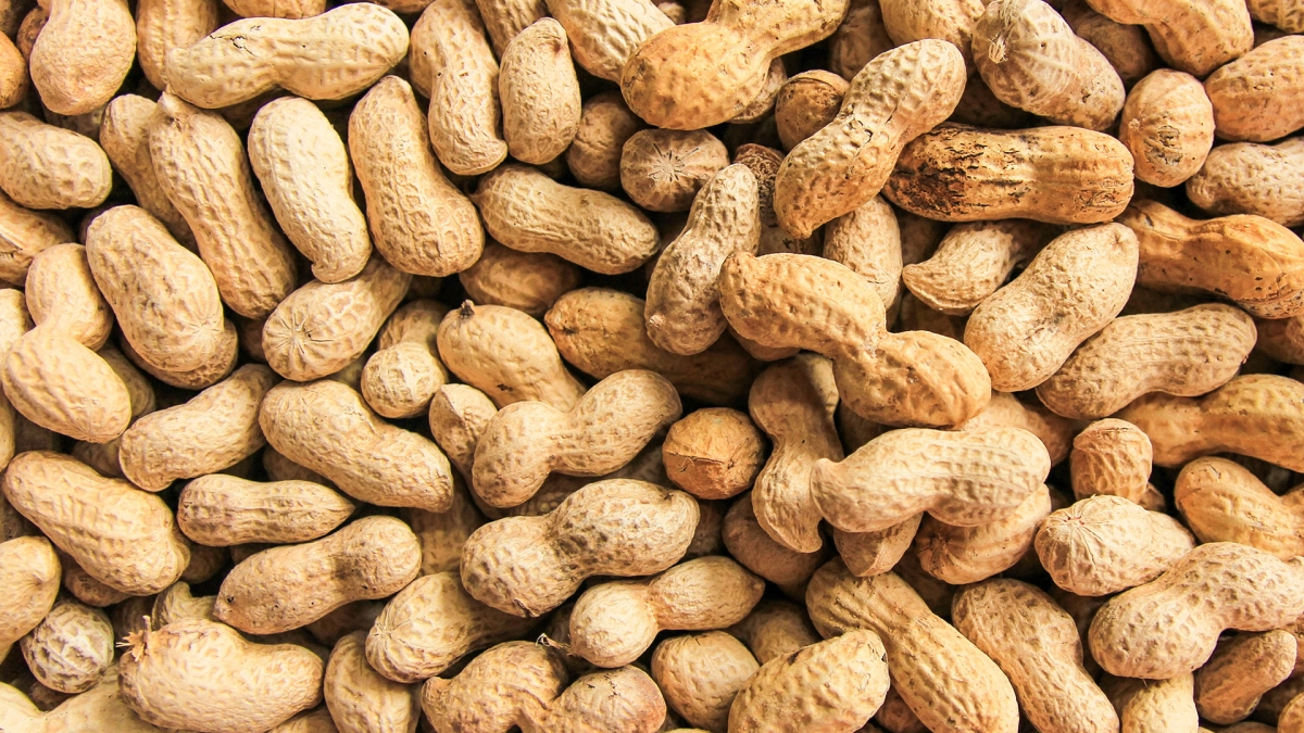 In Defense of Peanuts, the Most Humble Superfood for Athletes