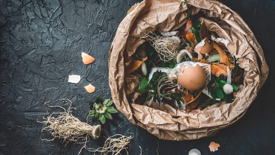 Organic food waste from vegetable ready for compost