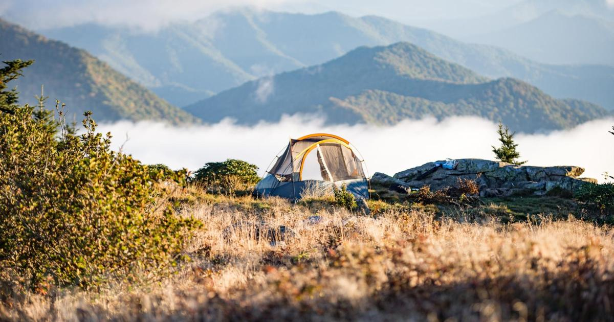 All the Best Outdoor Cooking Gear You Need for Your Camp Kitchen
