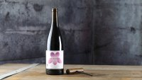 The Ultimate Guide to Natural Wines