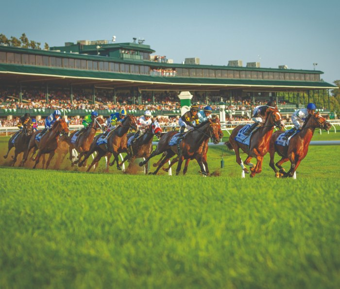 Horses in full stride at Keeneland Race Course