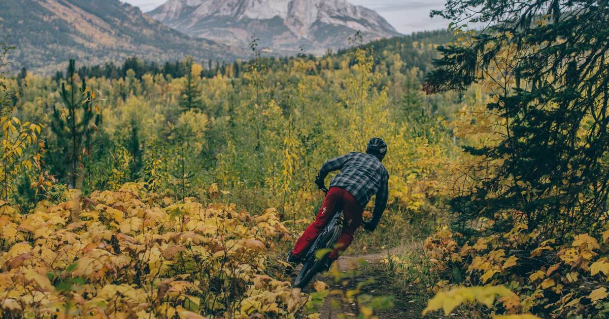 Riding Tips for New Mountain Bikers With Specialized Pro Dylan Sherrard