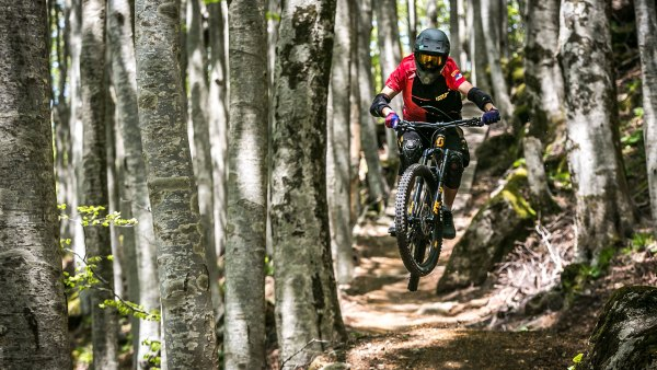 Mountain biker riding through Monte Amiata ski resort's beech forest in Tuscany, Italy