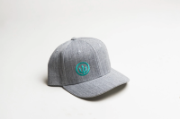 Curved Bill Grey with Teal Cap