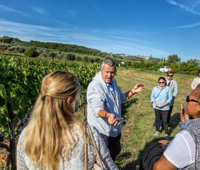 Vintner Giacomo Neri tasting grapes with a group of tourists across from Casanova di Neri winery in Montalcino, Tuscany
