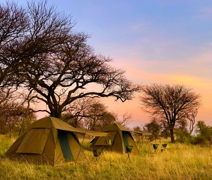 A backcountry tent camp in the Serengeti.