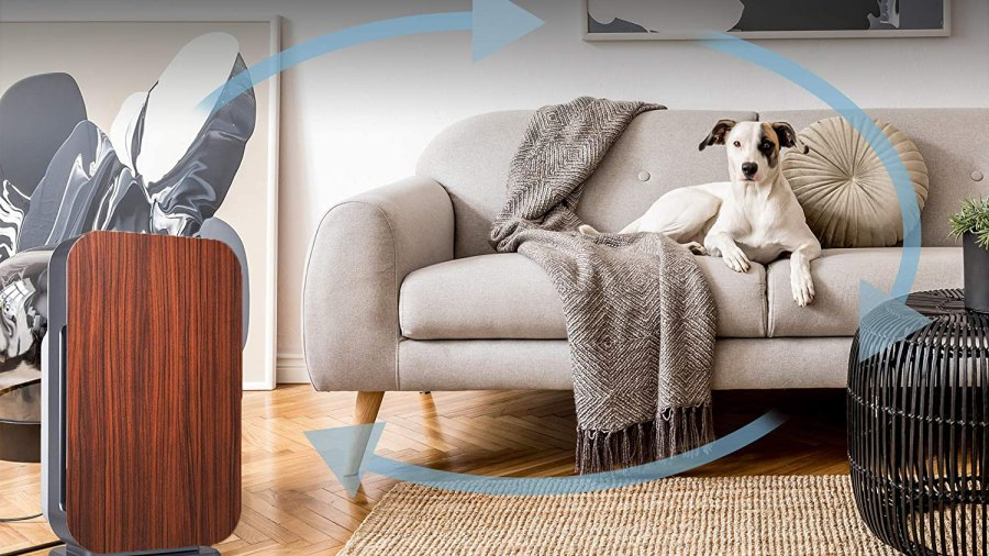 Alen FLEX Air Purifier