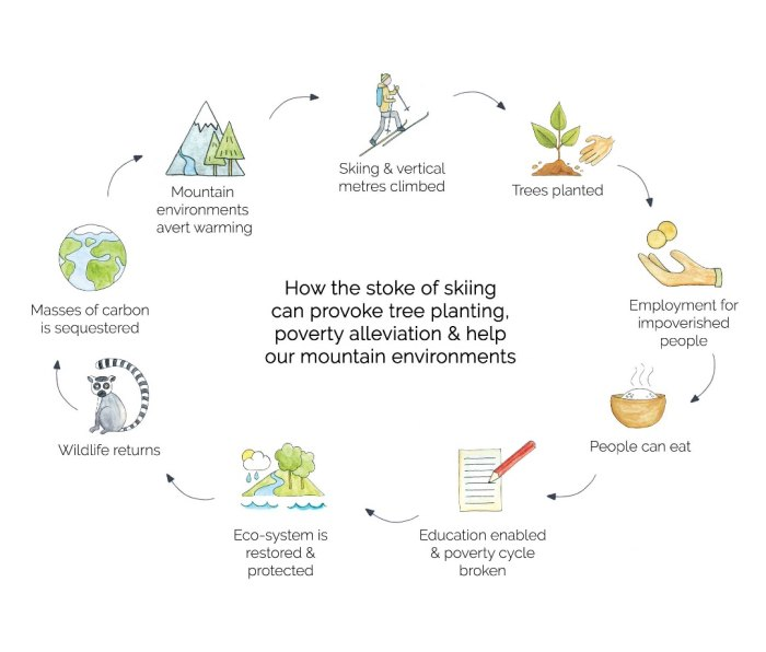 Flow chart on how skiing can help reforestation efforts