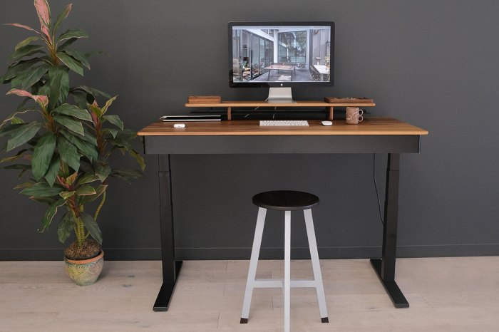 Sean Woolsey WFH Smart Desk