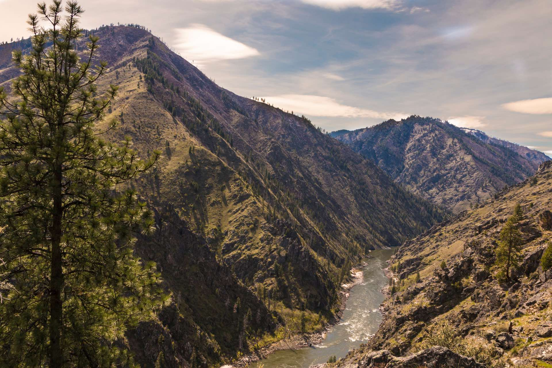 Deep canyons of the Main Salmon river wilderness idaho