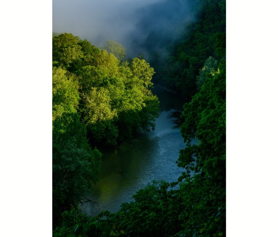 Morning Fog over Green River Trail in Kentucky
