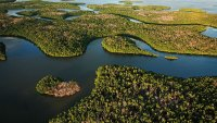Everglades National Park covers 1.5 million acres, the largest park in the Lower 48.