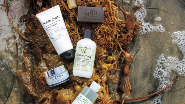 grooming-seaweed-products