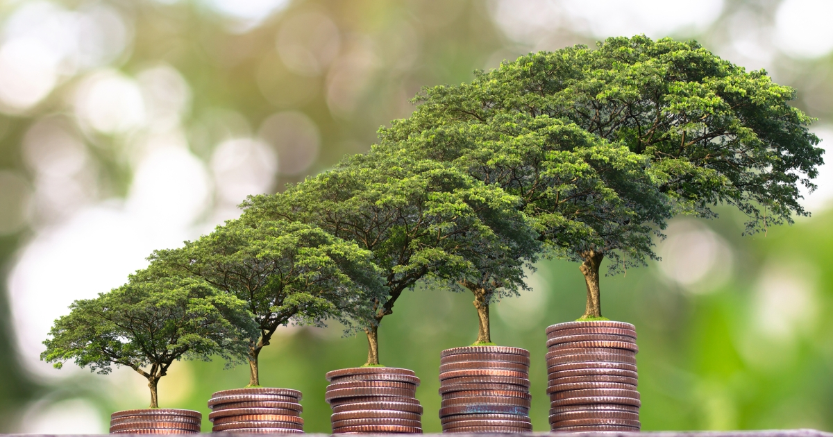 New Service Helps Consumers Plant a Tree With Every Purchase For Only Pennies